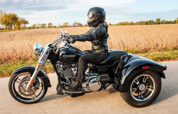 Harley Freewheeler